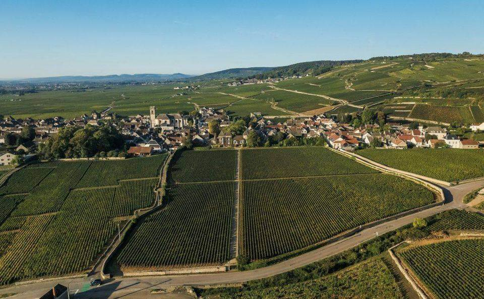 bourgogne-discovery-decouverte-des-vignes-de-bourgogne-france